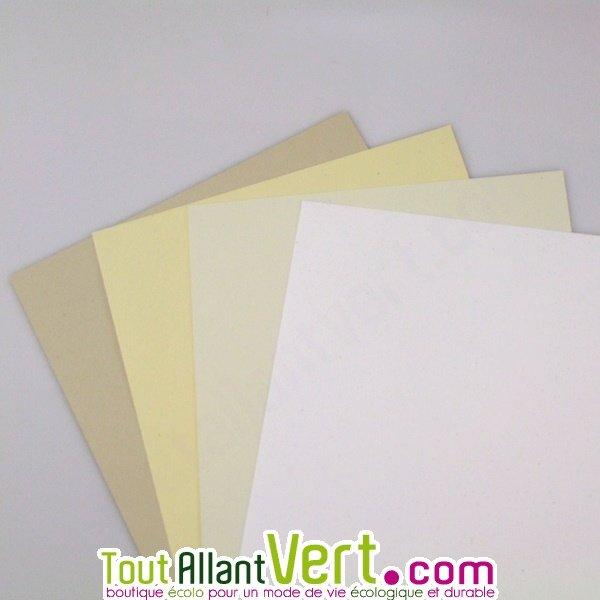 Papier Recycle Couleur Blanc Pour Carte De Visite 250g Achat Vente Ecologique